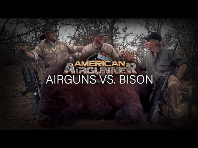 Video Review: Airgun Vs. Bison