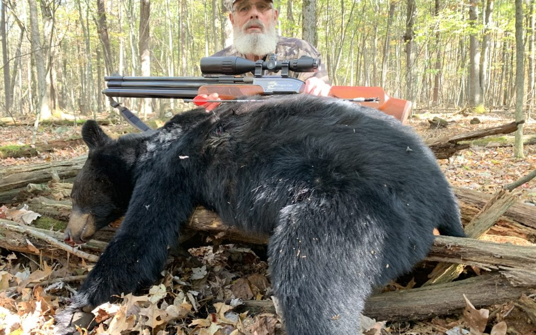 How To Get Set Up For Big Bore Air Rifle Hunting
