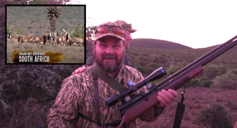 Kudu Cow Hunting with a 45 Airgun!