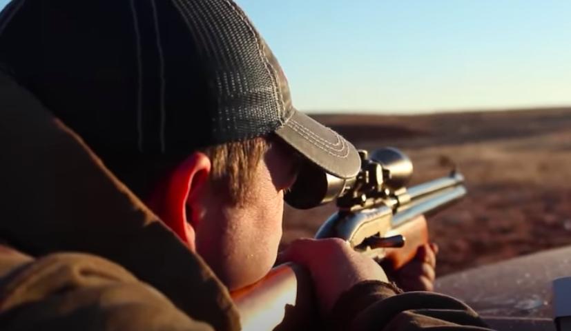 Airgun COYOTE Hunting | VAULT HUNTS