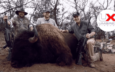 The Physics of Big Game Hunting with the Umarex Hammer Airgun